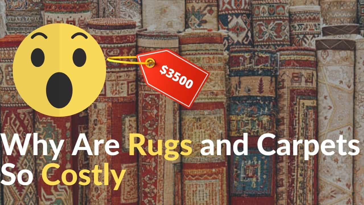 Why Are Rugs and Carpets So Costly.